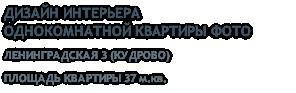 ДИЗАЙН ИНТЕРЬЕРА ОДНОКОМНАТНОЙ КВАРТИРЫ ФОТО ЛЕНИНГРАДСКАЯ 3 (КУДРОВО) ПЛОЩАДЬ КВАРТИРЫ 37 м.кв.